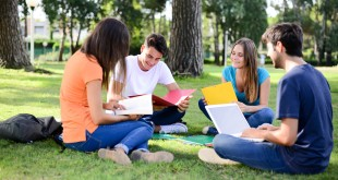Students on lawn of university campus